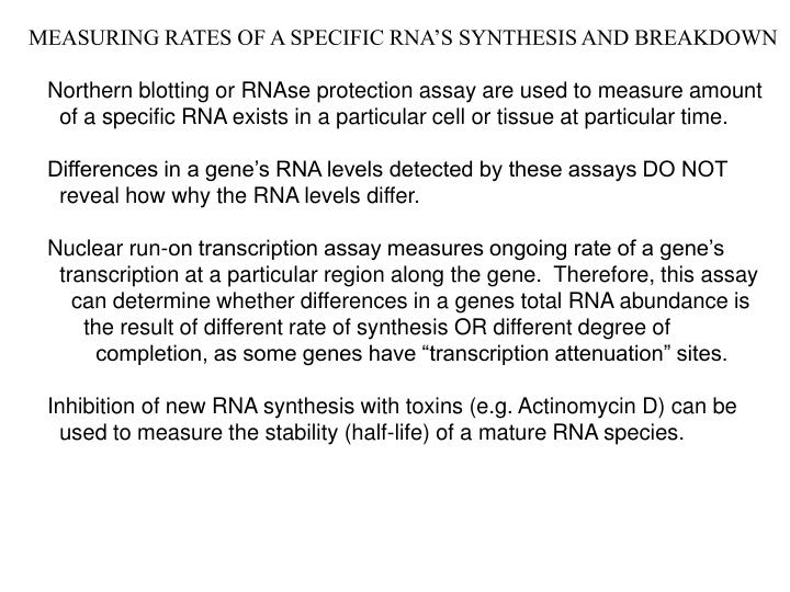 MEASURING RATES OF A SPECIFIC RNA'S SYNTHESIS AND BREAKDOWN
