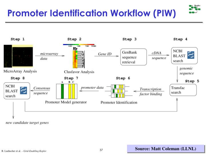 Promoter Identification Workflow (PIW)