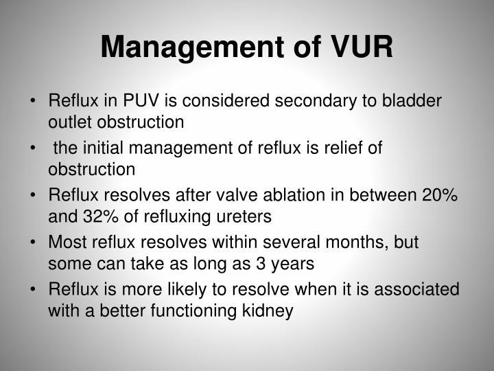 Management of VUR