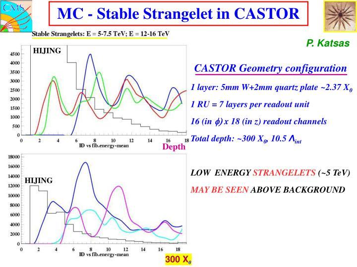 CASTOR Geometry configuration