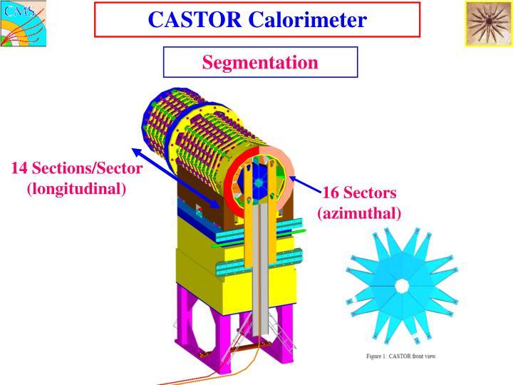 CASTOR Calorimeter