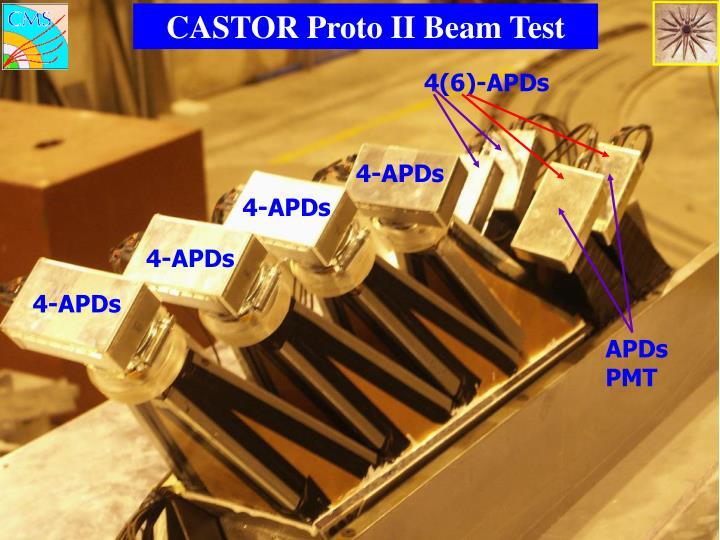 CASTOR Proto II Beam Test