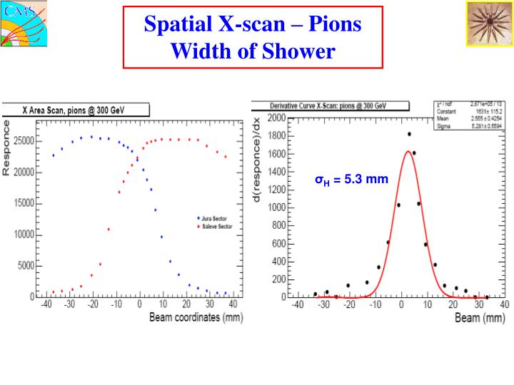 Spatial X-scan – Pions Width of Shower