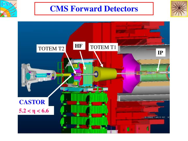 CMS Forward Detectors