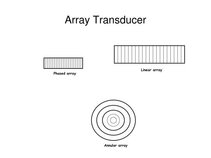 Array Transducer