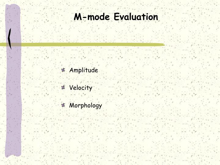 M-mode Evaluation