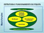 estrutura e funcionamento do pqg pa