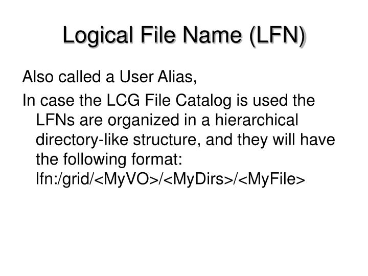 Logical File Name (LFN)