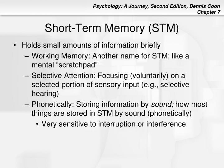 Short-Term Memory (STM)