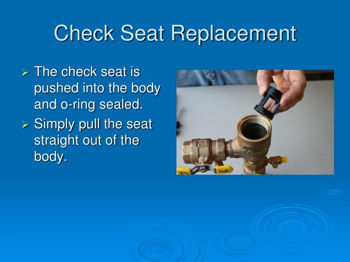 Check Seat Replacement