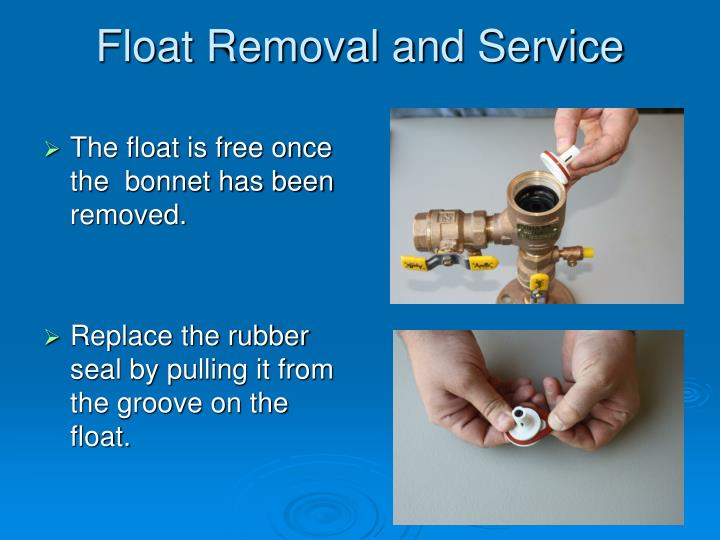 Float Removal and Service