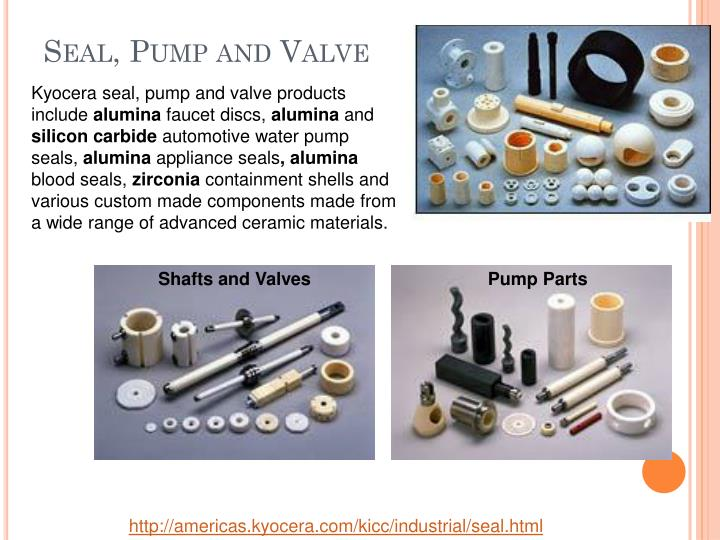 Seal, Pump and Valve