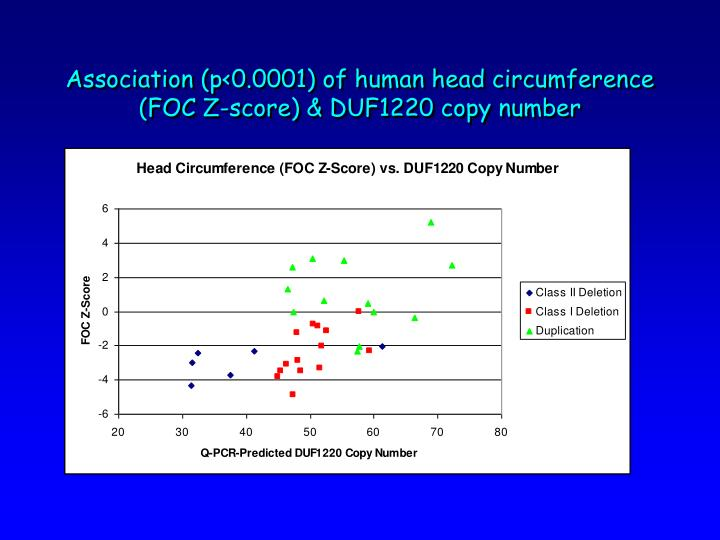 Association (p<0.0001) of human head circumference (FOC Z-score) & DUF1220 copy number