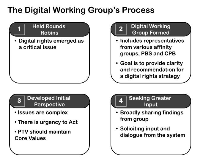 The Digital Working Group's Process