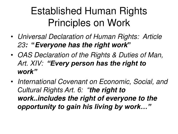 Established Human Rights Principles on Work