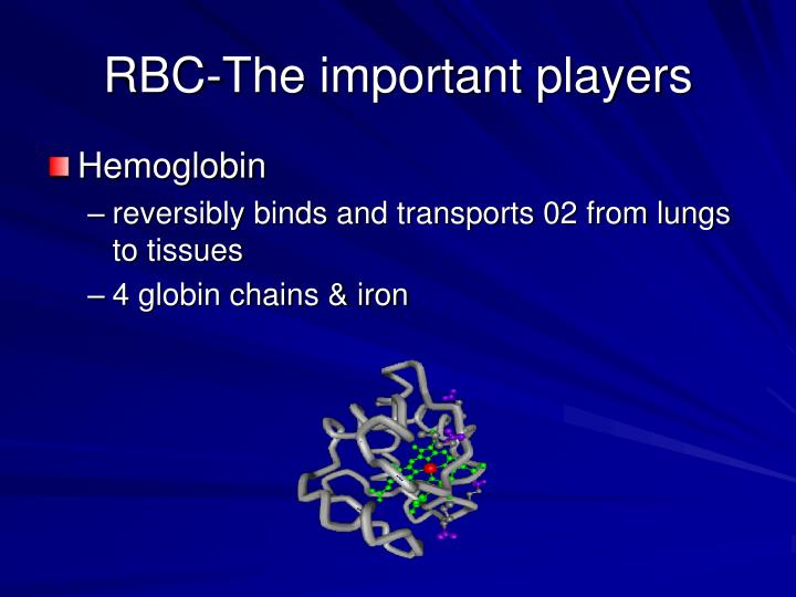 RBC-The important players