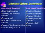 literature review synonymous