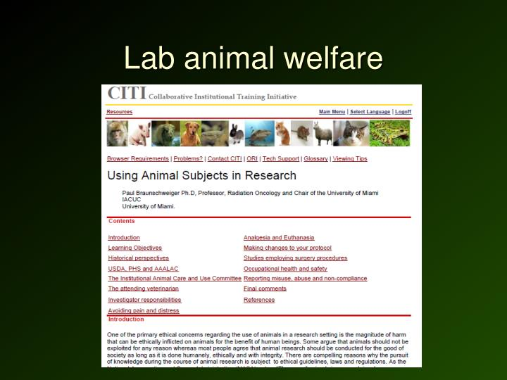 Lab animal welfare
