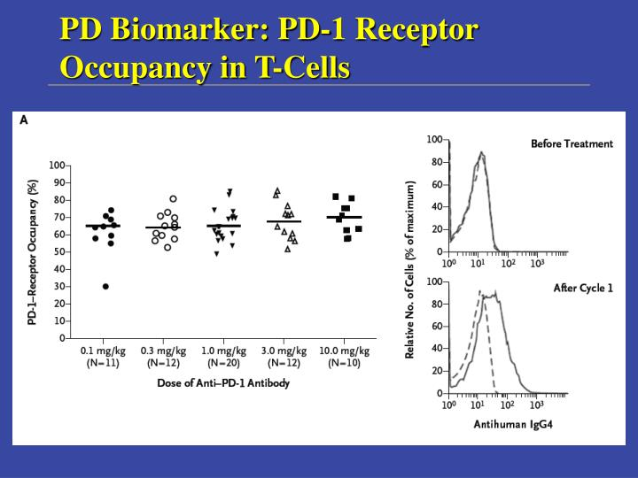 PD Biomarker: PD-1 Receptor Occupancy in T-Cells