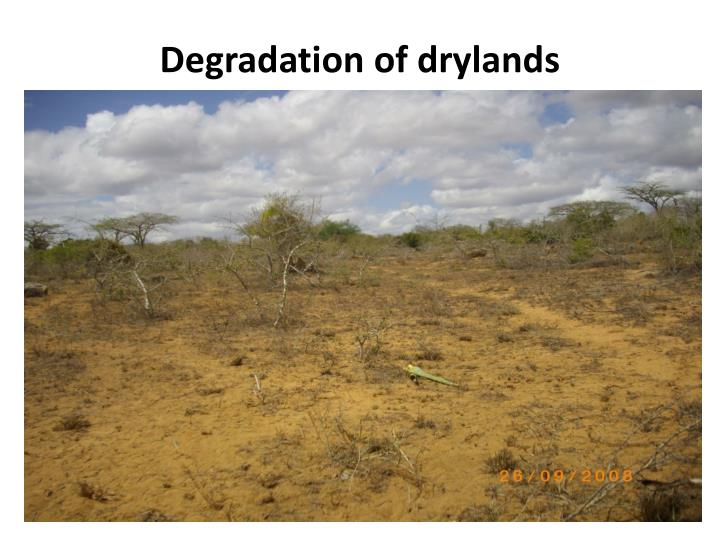 Degradation of drylands