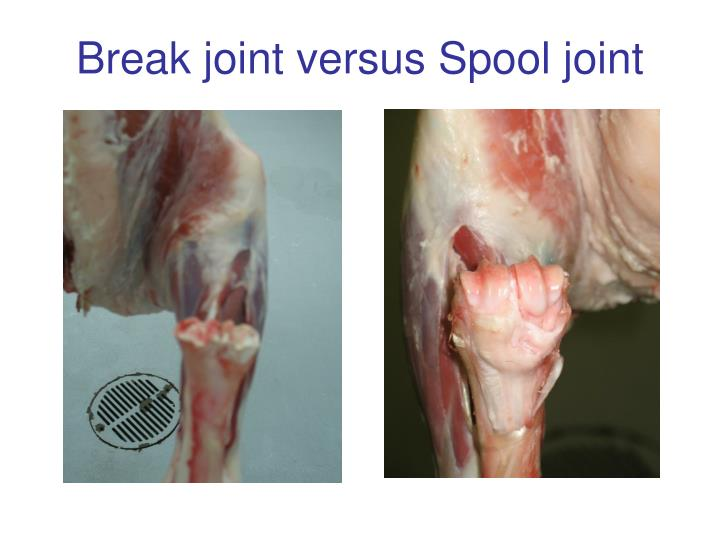 Break joint versus Spool joint