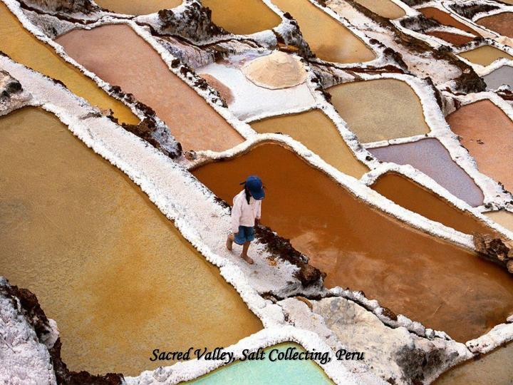 Sacred Valley, Salt Collecting, Peru