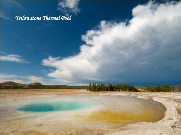 Yellowstone Thermal Pool