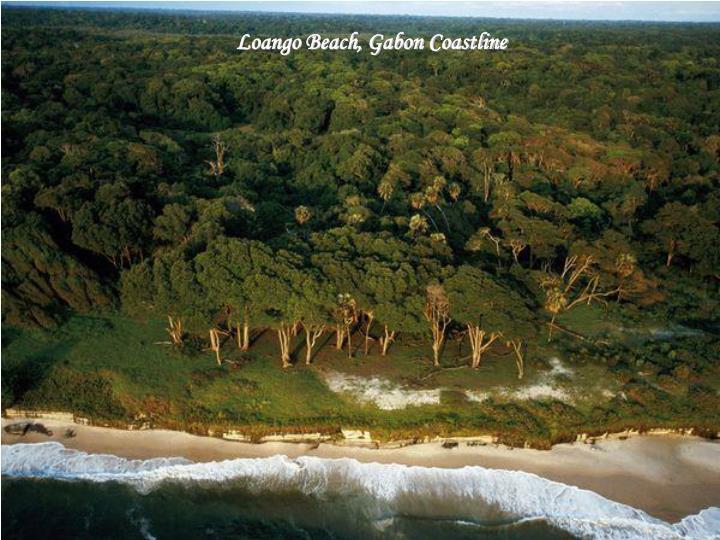Loango Beach, Gabon Coastline