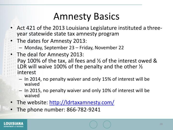 Amnesty Basics