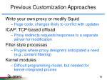 previous customization approaches