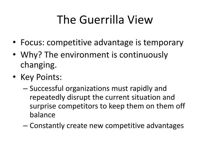 The Guerrilla View