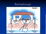 backsiphonage1