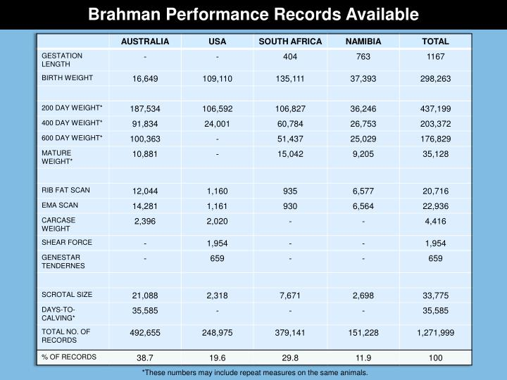 Brahman Performance Records Available