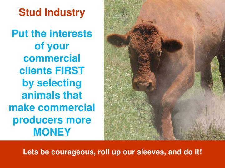 Stud Industry
