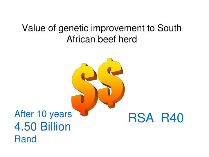 Value of genetic improvement to South African beef herd