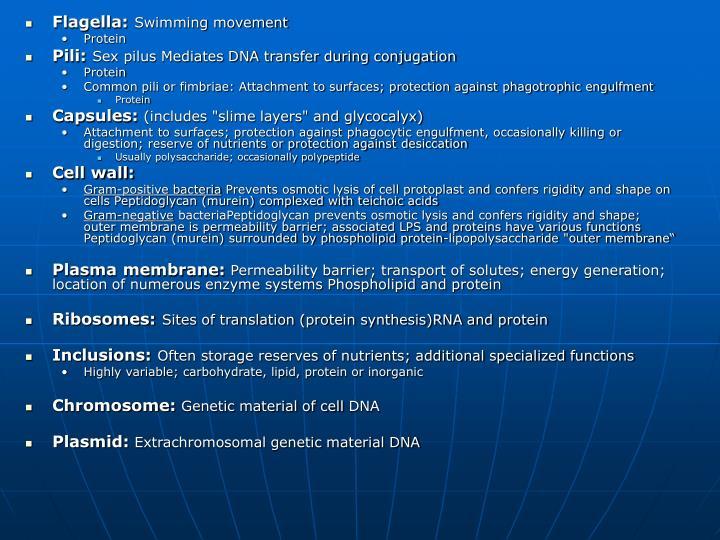 Flagella: