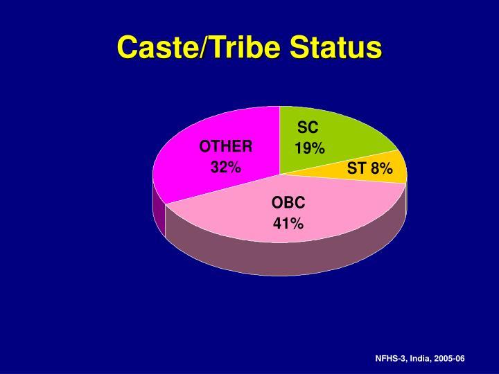 Caste/Tribe Status