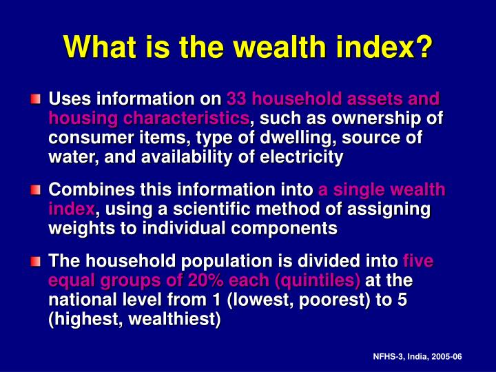 What is the wealth index?
