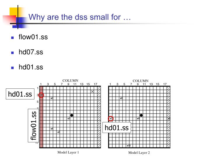 Why are the dss small for …