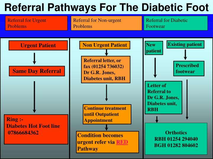 Referral Pathways For The Diabetic Foot