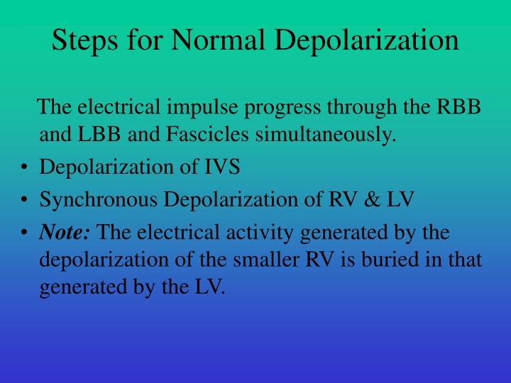 Steps for Normal Depolarization