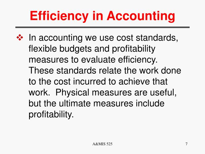 Efficiency in Accounting