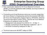 enterprise sourcing group esg organizational overview
