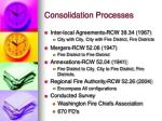 consolidation processes