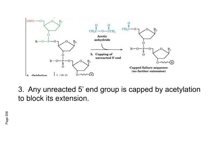 3.  Any unreacted 5' end group is capped by acetylation to block its extension.
