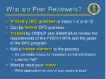 who are peer reviewers