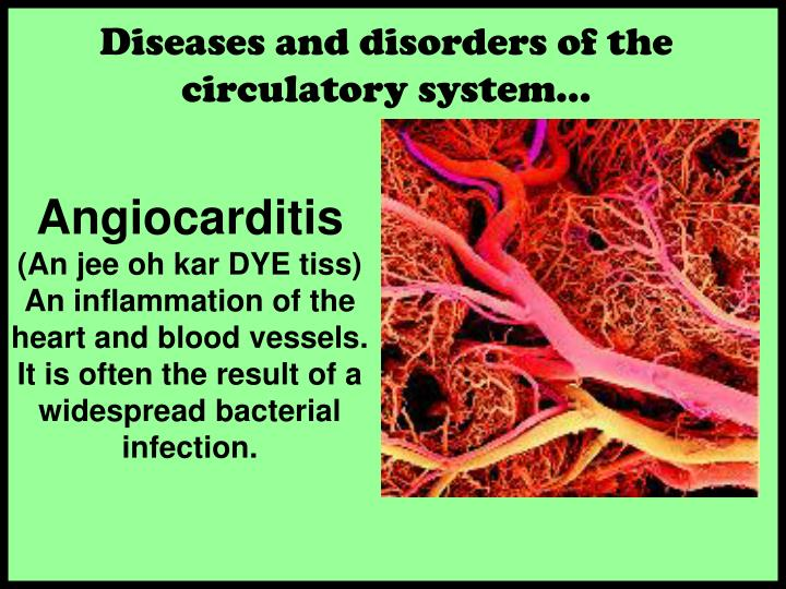 Diseases and disorders of the circulatory system…