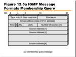 figure 12 5a igmp message formats membership query