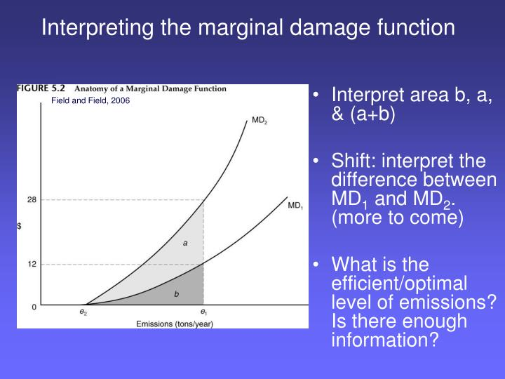 Interpreting the marginal damage function