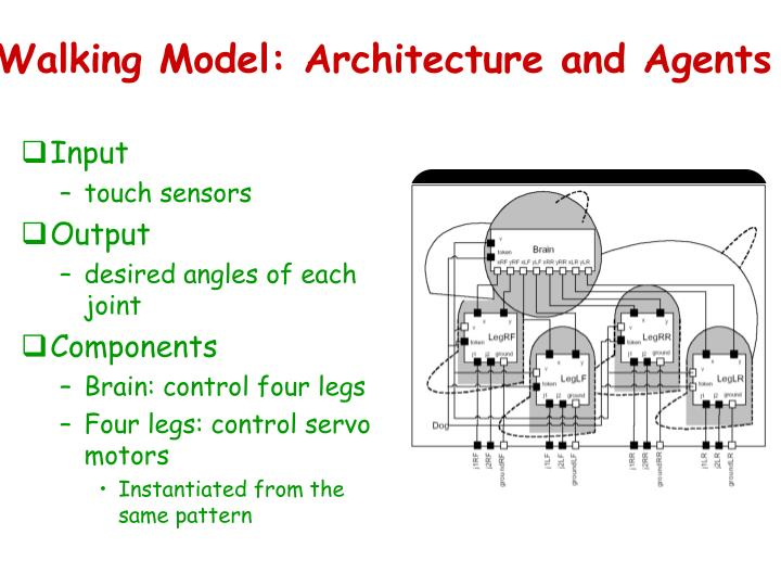 Walking Model: Architecture and Agents